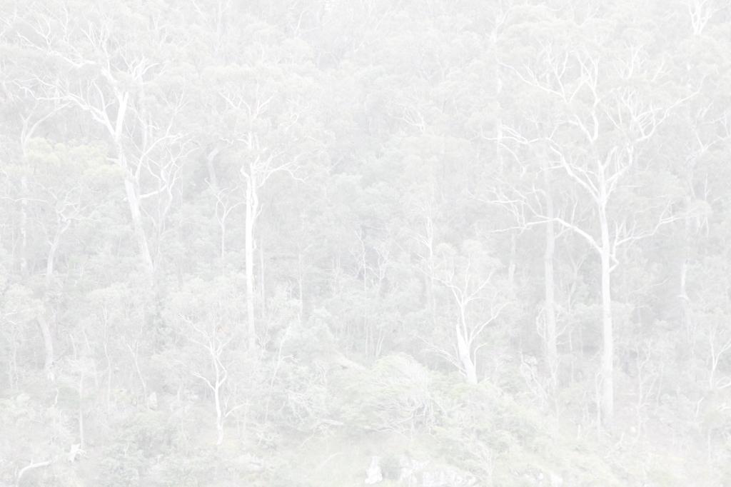 Eden_0013